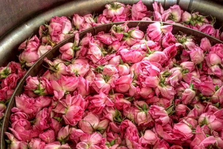 Khloris rose water ingredients. Just roses